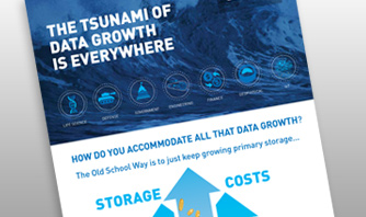 The Tsunami of Data Growth is Everywhere