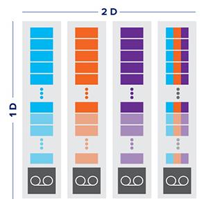 Patent-Pending 2D Erasure Coding