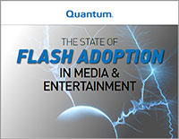 The State of Flash Adoptions in Media & Entertainment