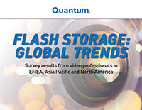 Flash Storage: Global Trends