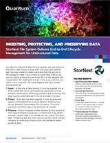 Ingesting, Protecting, and Preserving Data