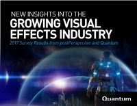 New Insights Into the Growing Visual Effects Industry E-Book